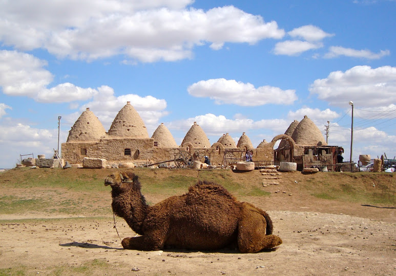 Harran Kumbet house cluster (Photo Aigerim Korzhumbayeva, 2011)