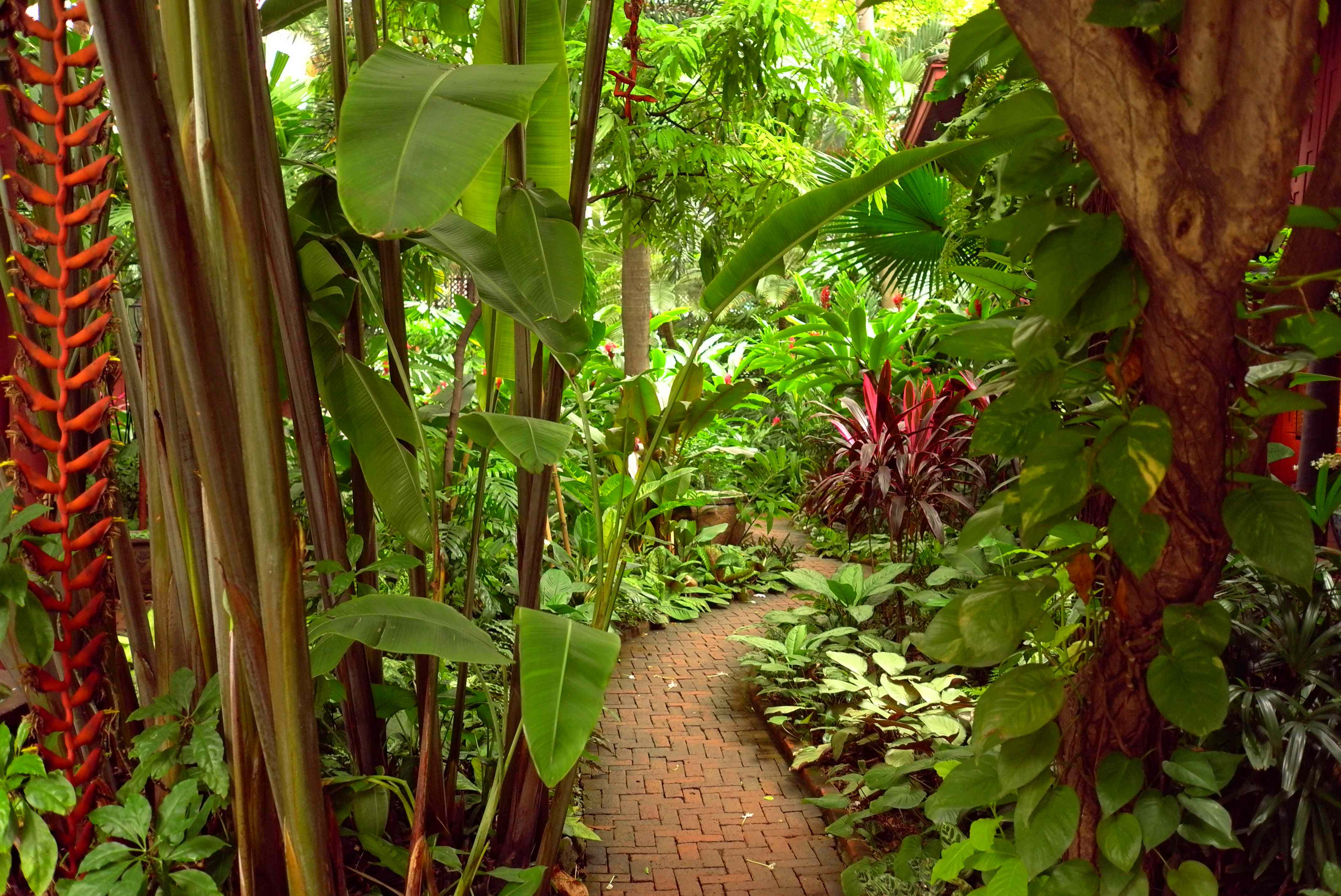 A detail of the lush tropical garden surrounding the home and buildings (Photo Catherine Clover, 2013)
