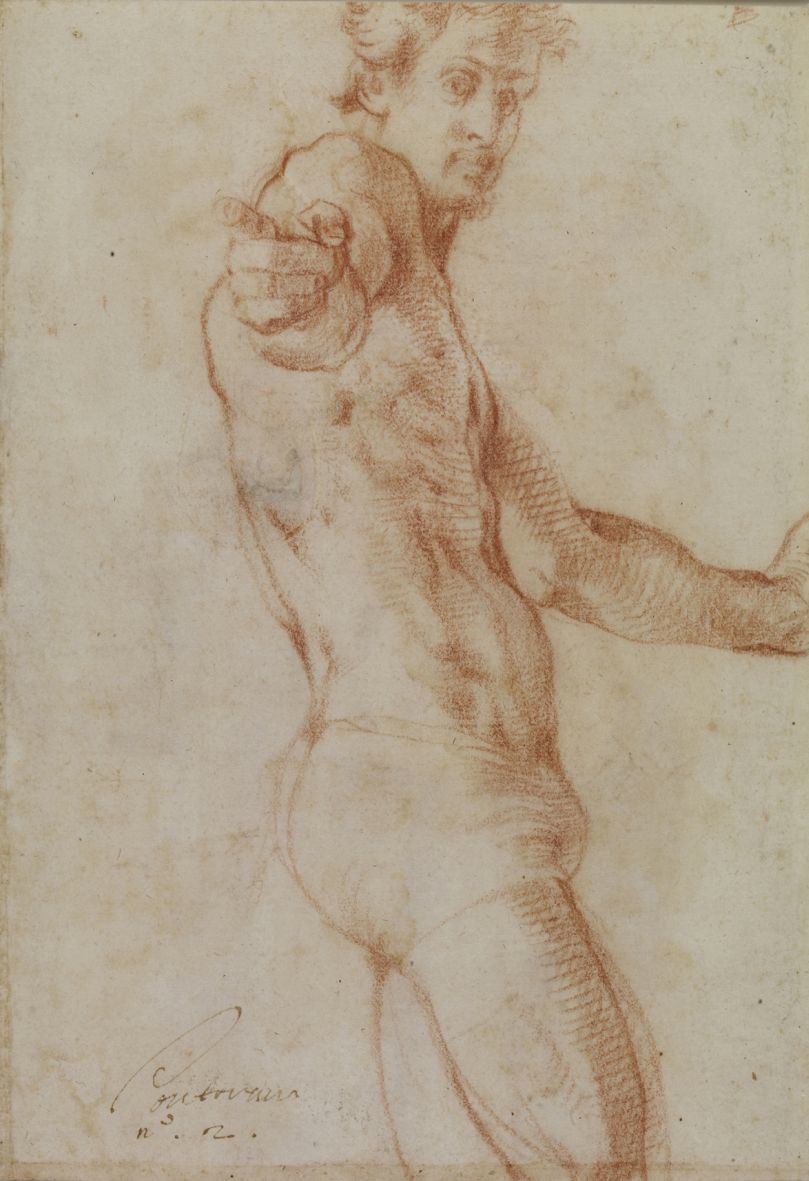 Fig. 3    Pontormo, Study of a Nude (Self portrait?), 1522-1525 (red chalk on paper, 218 z 195mm), London, The British Museum, 1936, 1010.10.