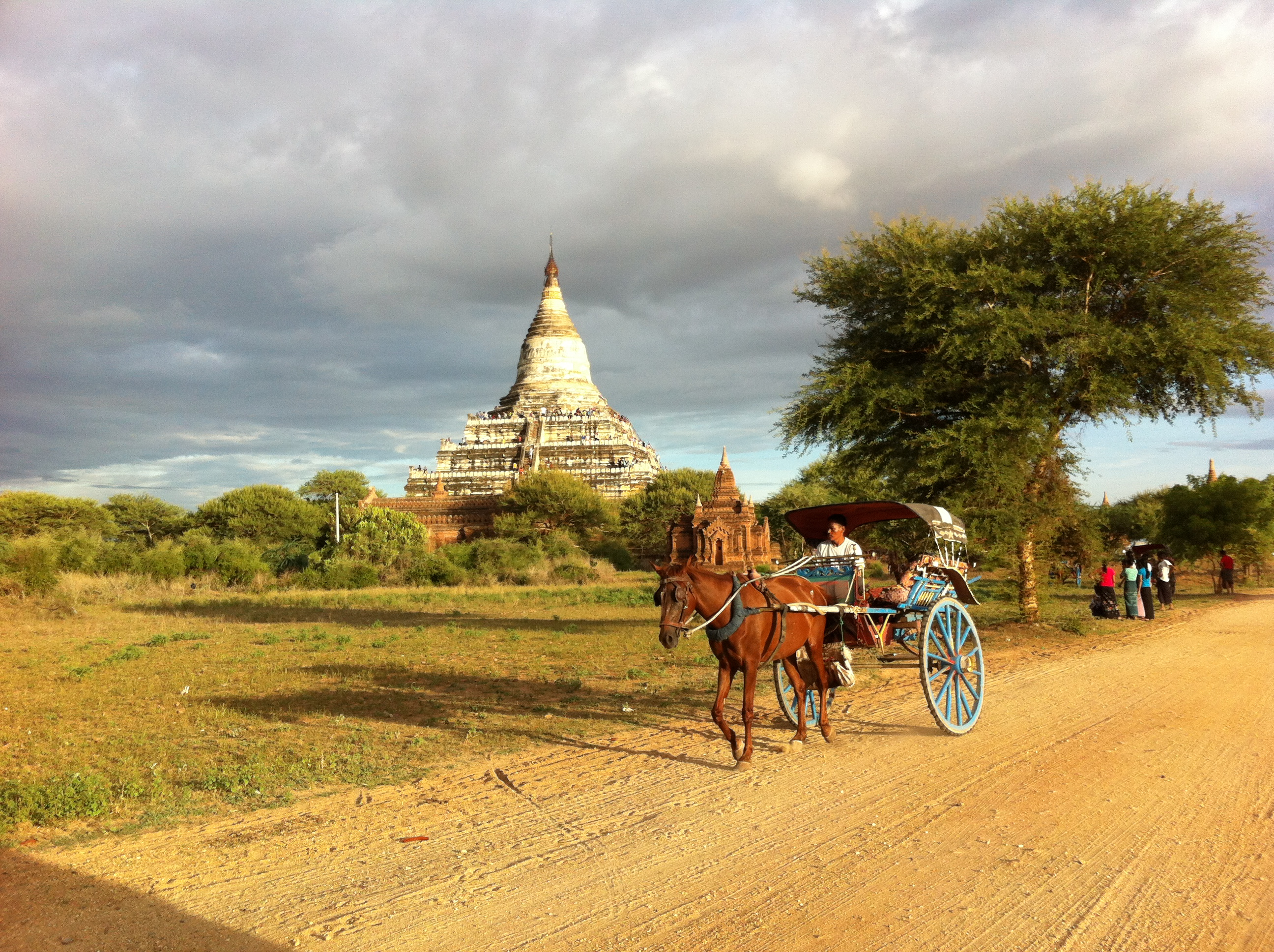 Horse cart en route to Shwe San Daw Temple at sunset (Photo Catherine Clover 2014)